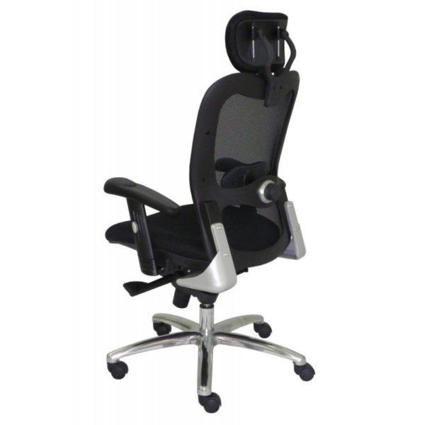 cadeira Presidente New Ergon